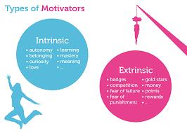 extrinsic-intrinsic-motivation-startup-growth-strategies@alessiacamera